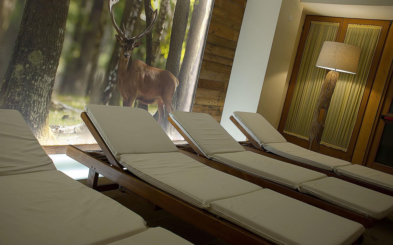 ZONA RELAX<br>HOTEL SALVADORI - MEZZANA